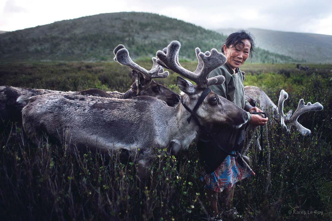 Photo d'une femme de la tribu des Tsataan, accompagnée de ses rennes dans les montagnes de la Mongolie